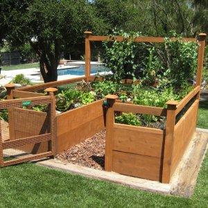 vegitable garden kit